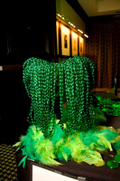 2013-03-15 - 1st Annual St. Patrick's Party 009